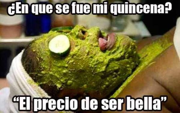 aguacate7