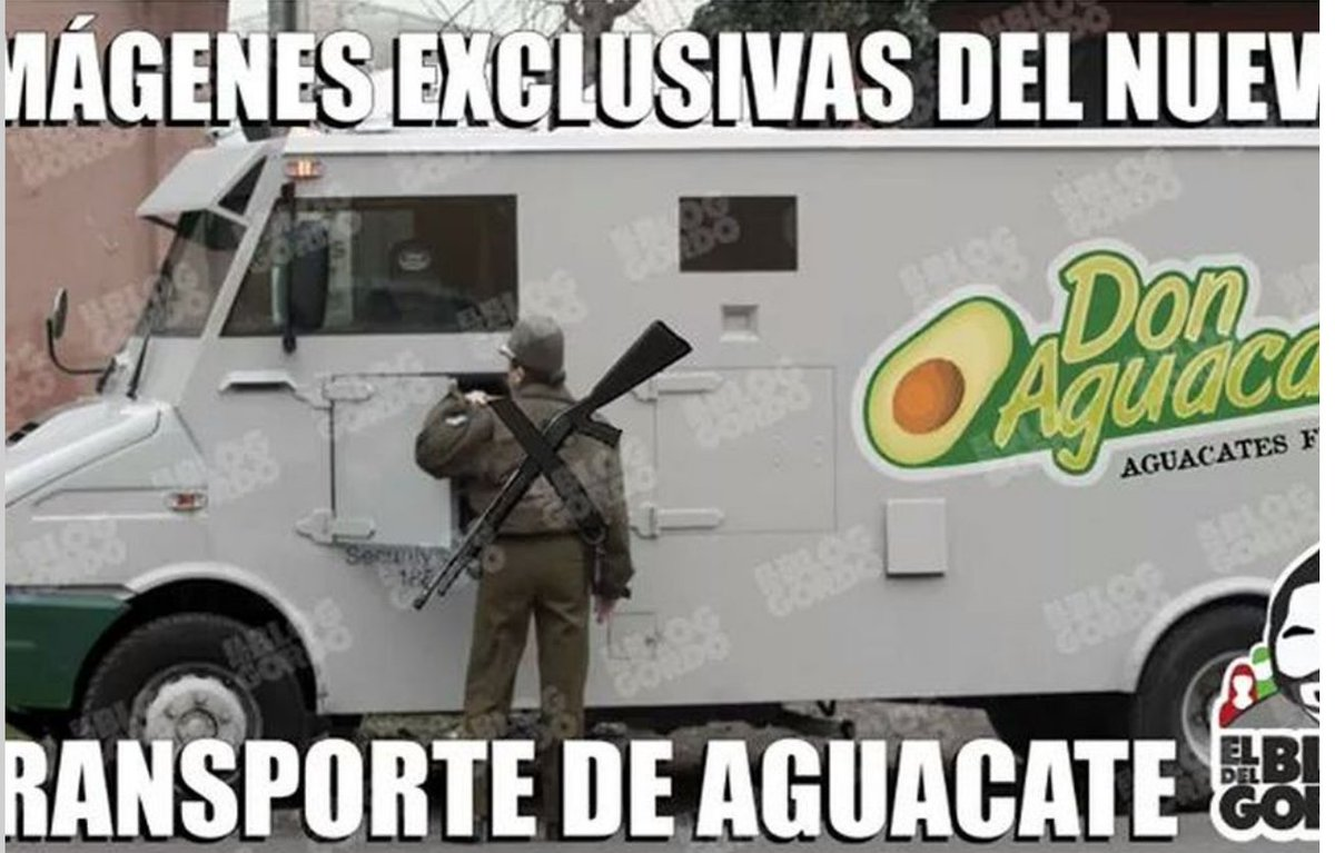 aguacate8