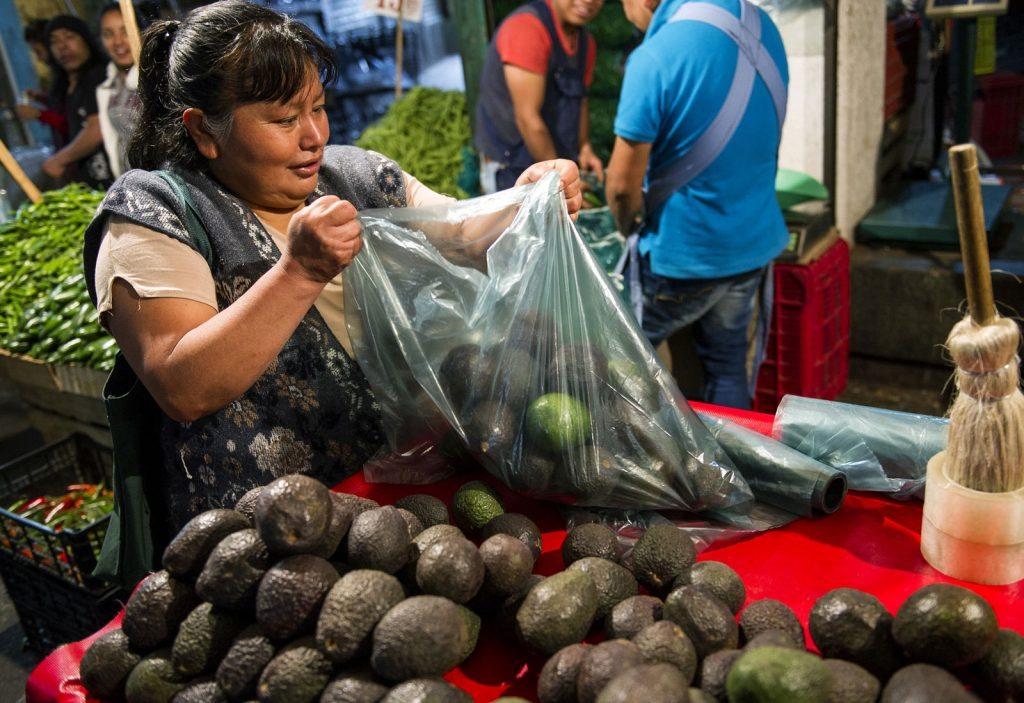 Aguacate en los mercados de México