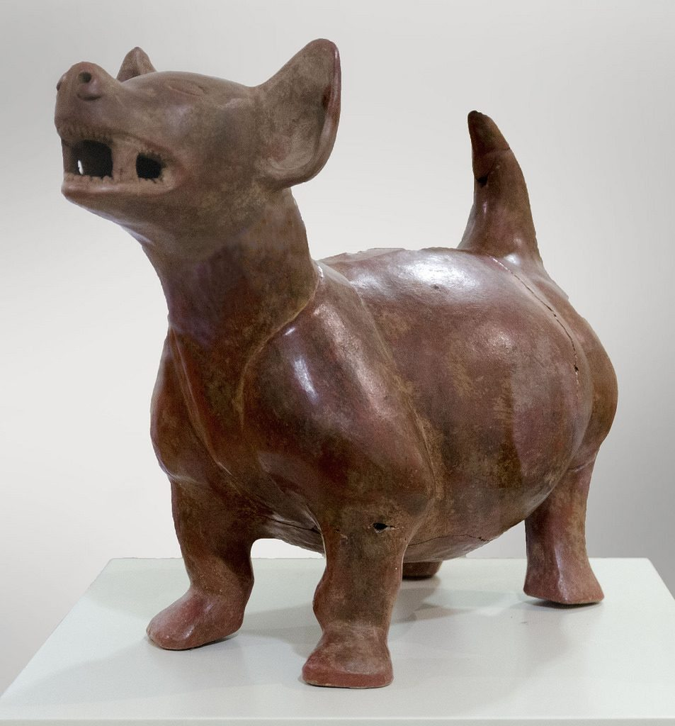perros-razas-prehispanicas
