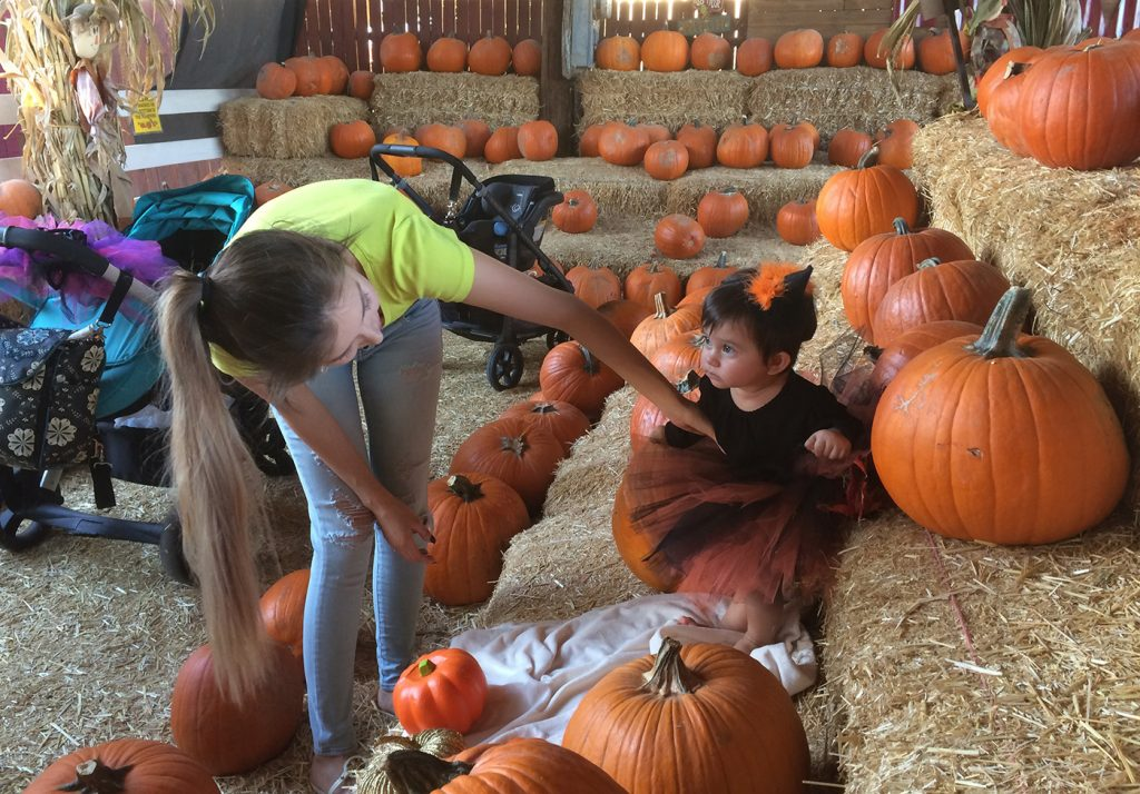 Shirley Pina straightens the outfit of her 9-month-old daughter, Ivanna Lugo, for a photo at the Tolmachoff Farms pumpkin patch on Wednesday, Oct. 26, 2016 in Glendale, Ariz. In Arizona, jack-o'-lanterns may not be the only things face-melting this Halloween. The state is in the midst of a heat wave that has made October one of the hottest in years, including lengthy runs of 90-plus degree days in Phoenix and Tucson that could break a record Thursday. (AP Photo/Terry Tang)