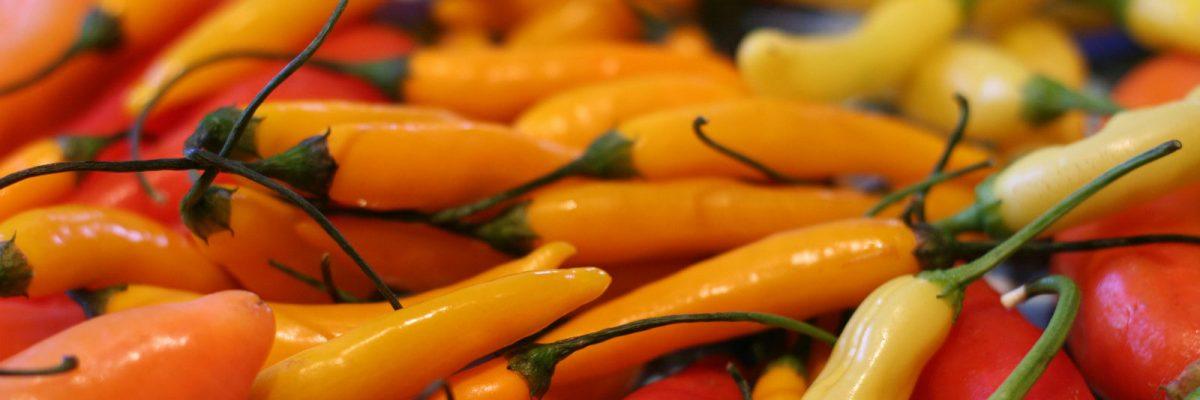 El chile es esencial en la comida mexicana