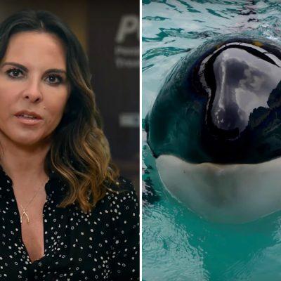 Kate del Castillo y PETA - Liberación de la orca Lolita