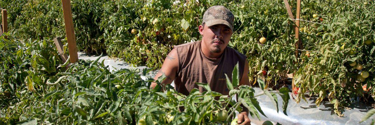 Trabajadores Inmigrantes en Iowa