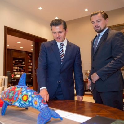 Leonardo DiCaprio se preocupa por las vaquitas marinas.