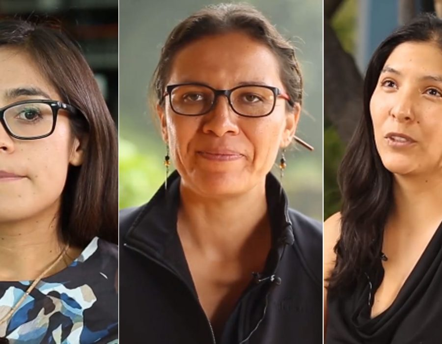 Científicas mexicanas ganan beca