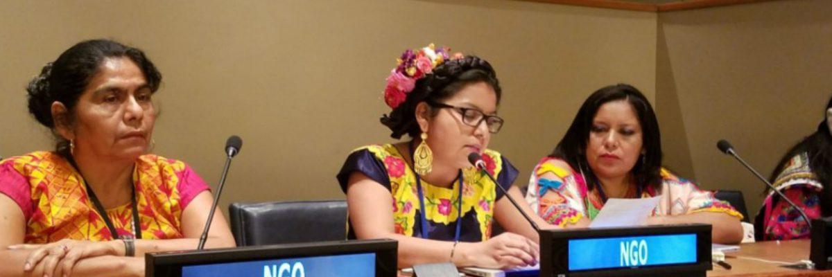 #Luchonas: Indígenas oaxaqueñas ganaron un premio internacional por defender a su tierra y a su pueblo