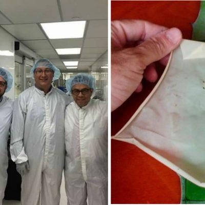 Científicos mexicanos utilizan agave para hacer biopiel