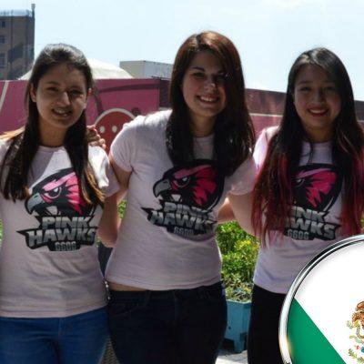 Pink Hawks