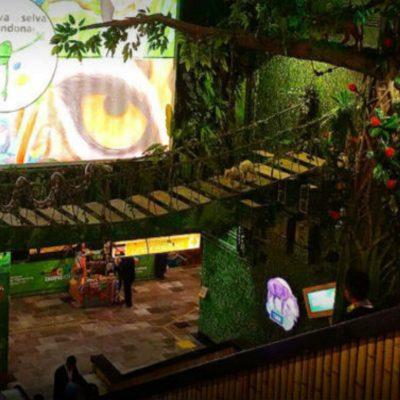 Selva Lacandona en el metro de la CDMX