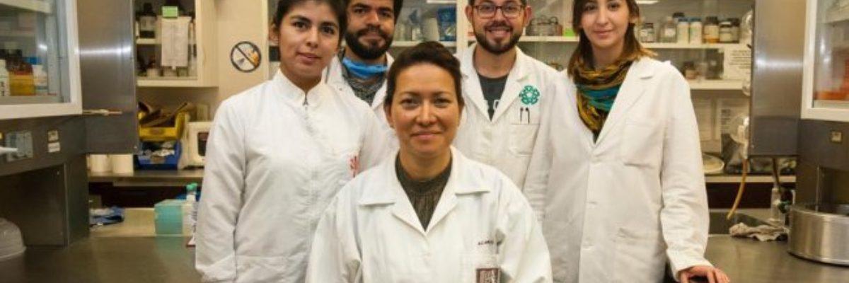 Científicos mexicanos logran erradicar virus incurable