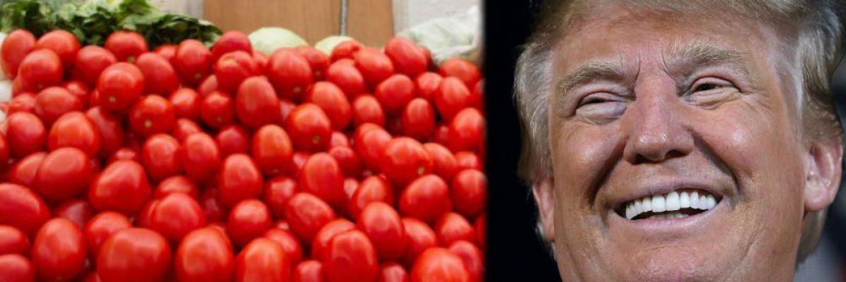 En Estados Unidos darían nuevo golpe a mexicanos por el tema del tomate