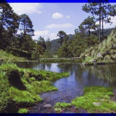 Estos son los lagos y lagunas mexicanos envidia del mundo que deberías visitar