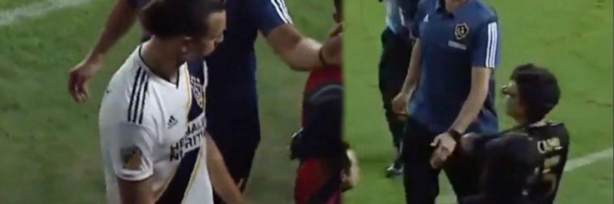 Jaime Camil se burla de Zlatan Ibrahimovic y éste reacciona de forma inesperada